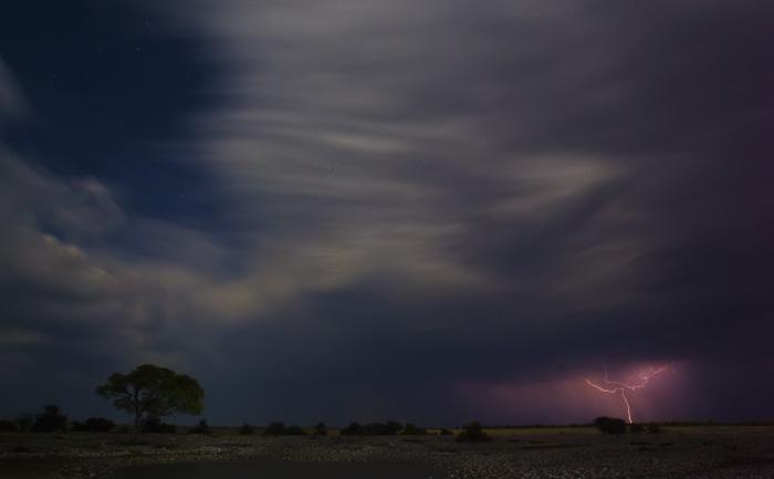 A Storm in Etosha
