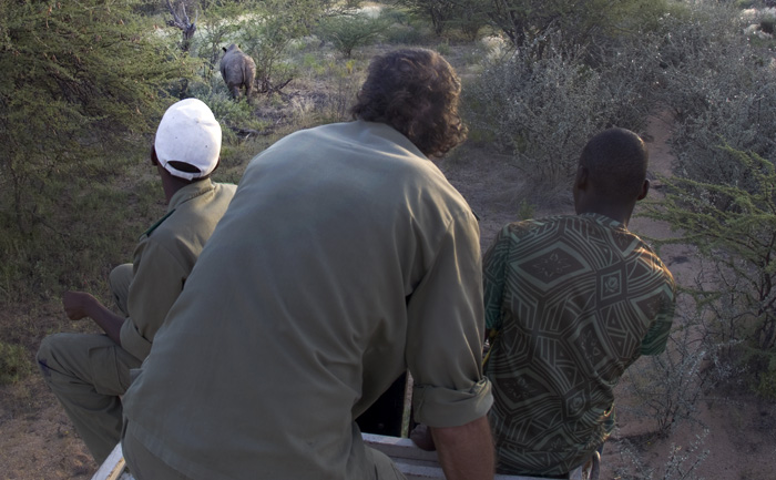 The vet and staff monitor the released rhinoceros