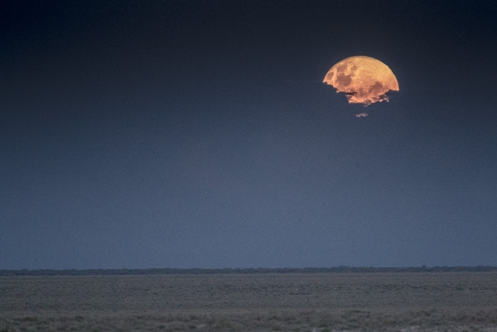 A full moon peeks through the storm clouds over the Okaukuejo plains